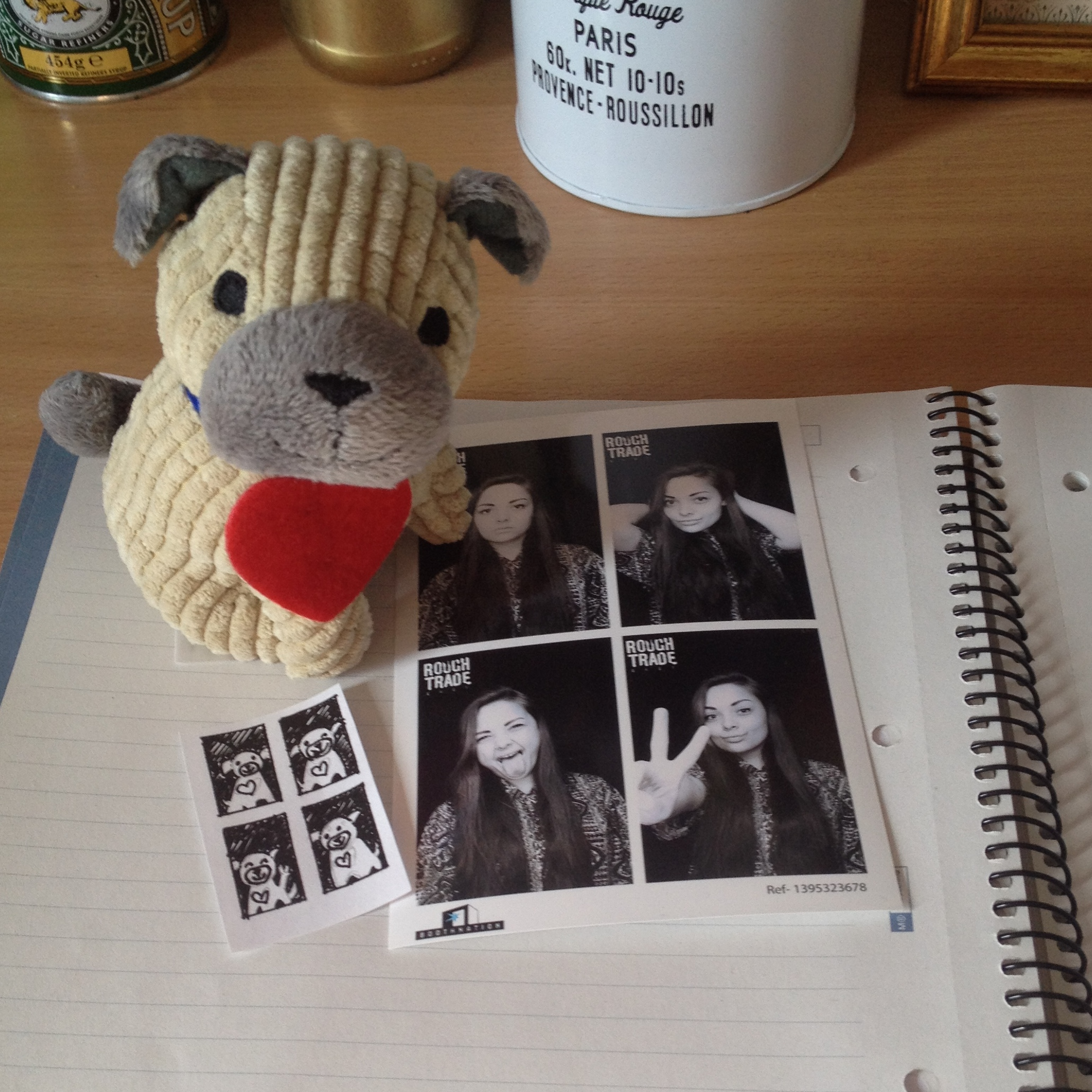 d556bf0a2fd (puggy says that he s a fan of selfies too)